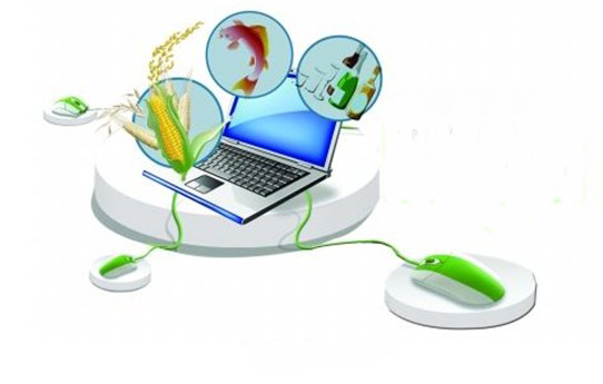 B2C电子商务平台