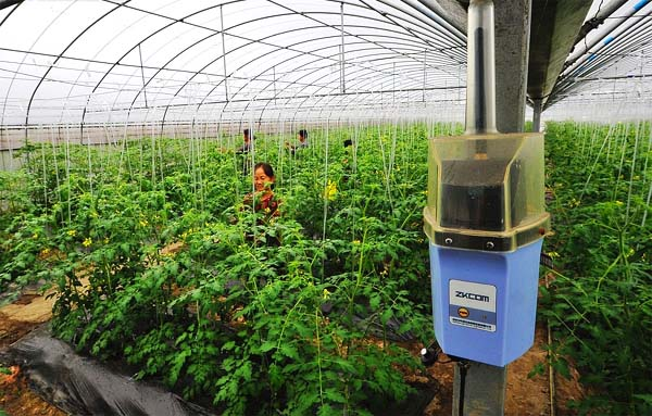 生态智慧农业的发展趋势图片