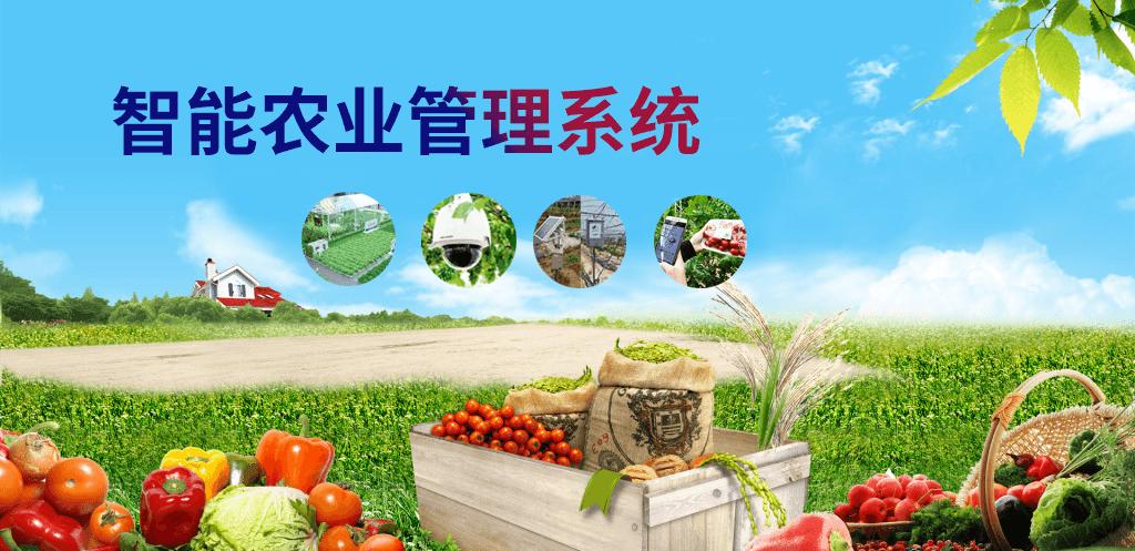 智能农业管理系统