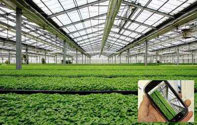 智慧农业管理系统的实现
