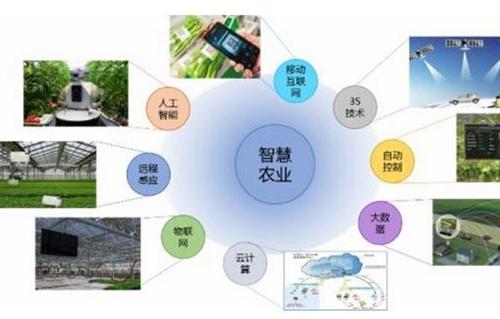 六安市首家生态智慧农业示范基地在裕安建成
